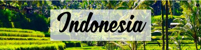 Indonesia Blog Posts